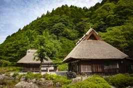 Thatched-roof houses